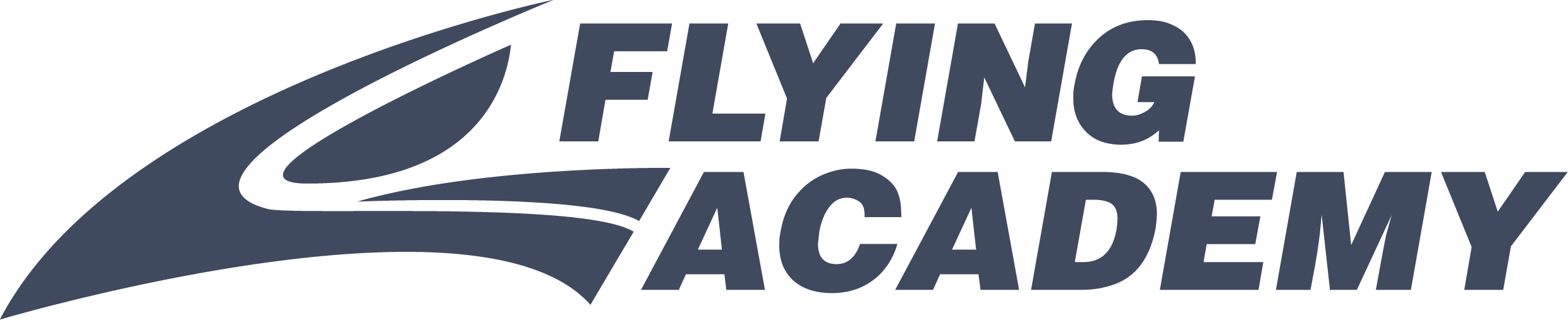 Logo Flying Academy